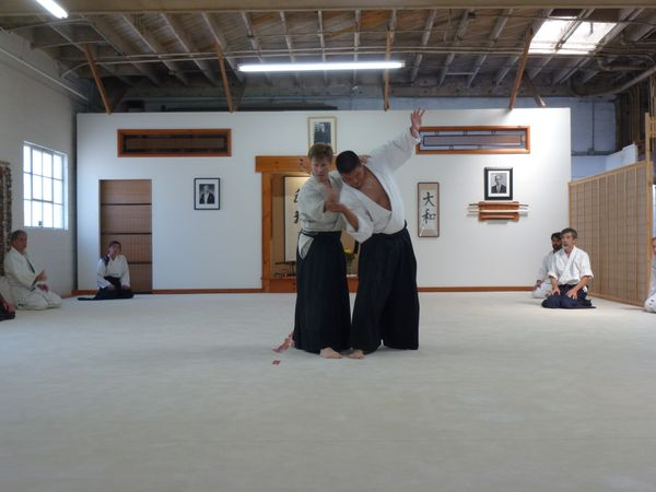New Video about Aikido and Daiwa